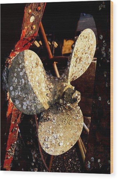 Rustic Propeller Wood Print
