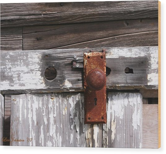 Rusty Entry Wood Print by Lisa Johnston