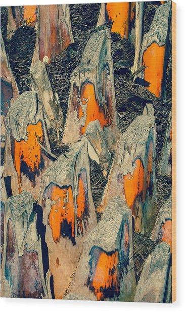 Sabal Palm Wood Print