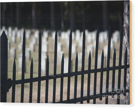 Sackets Harbor Military Cemetery Wood Print by Fred Lassmann