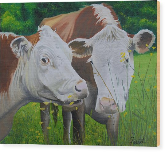 Sacred Cows Wood Print