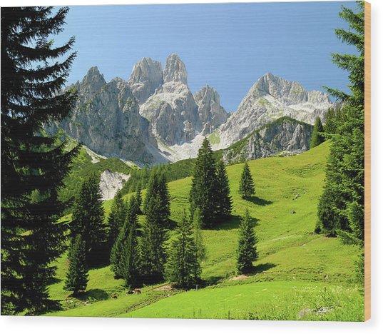 Sacred Land Wood Print