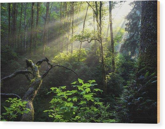Sacred Light Wood Print