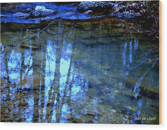 Sacred Water Life Wood Print