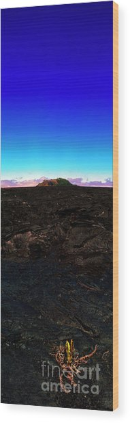 Saddle Road Humuula Lava Field Big Island Hawaii  Wood Print