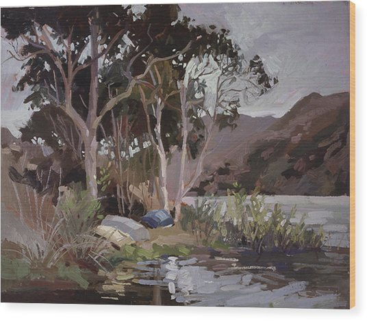 Safe Shelter  - Plein Air - Catalina Island Wood Print