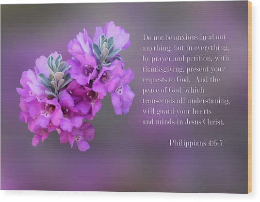 Sage Blossoms Philippians 4 Vs 6-7 Wood Print