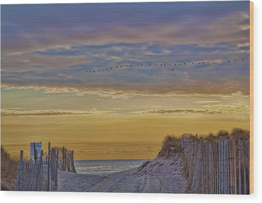 Sagg Main Beach In Winter Wood Print
