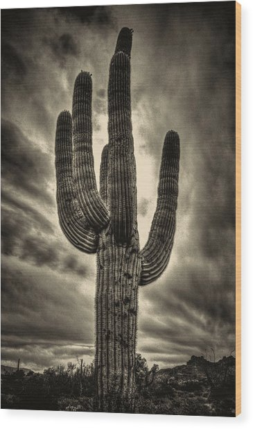 Saguaro And Storm Clouds Wood Print
