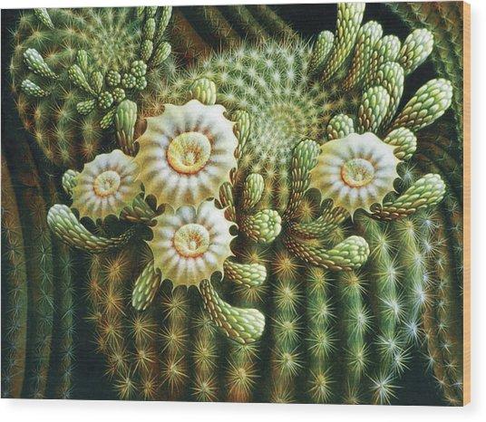 Saguaro Cactus Blossoms Wood Print