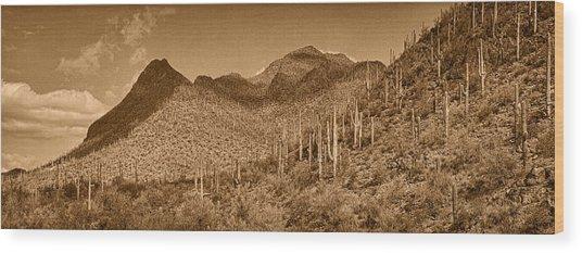 Saguaro Hillsides Tint  Wood Print