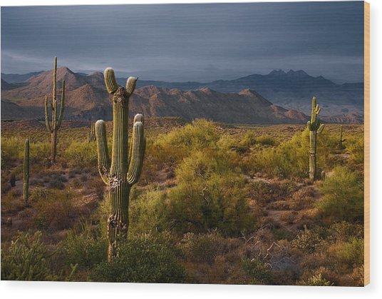 Saguaro Sunset At Four Peaks Arizona Wood Print