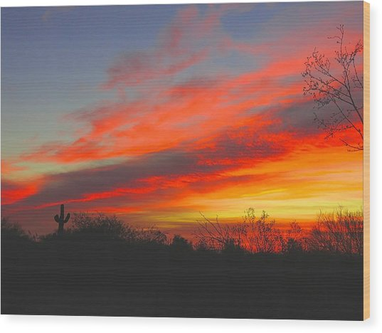 Saguaro Winter Sunrise Wood Print
