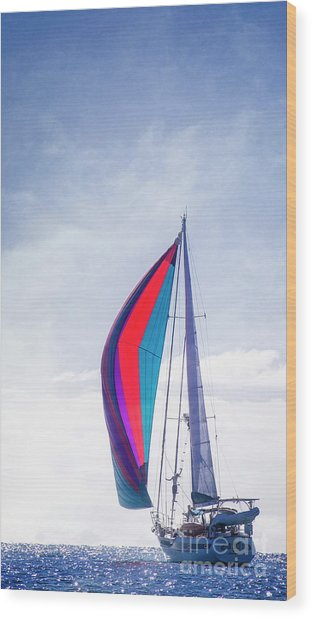 Wood Print featuring the photograph Sail Away by Scott Kemper