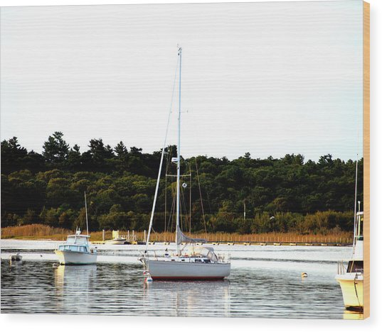 Sail Boat At Anchor  Wood Print