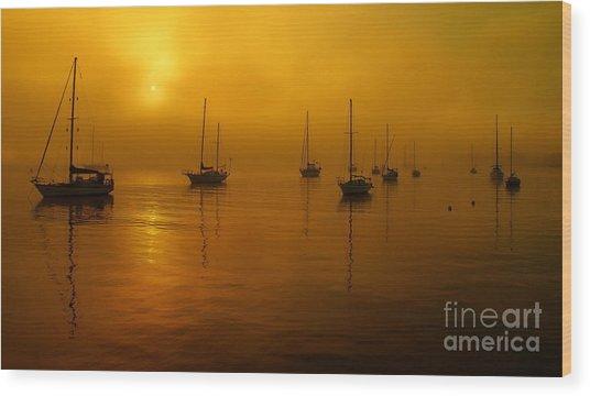 Sail Boats In Fog Wood Print