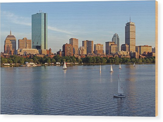 Sail Boston Wood Print