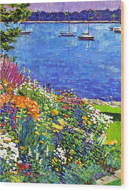 Sailboat Bay Garden Wood Print