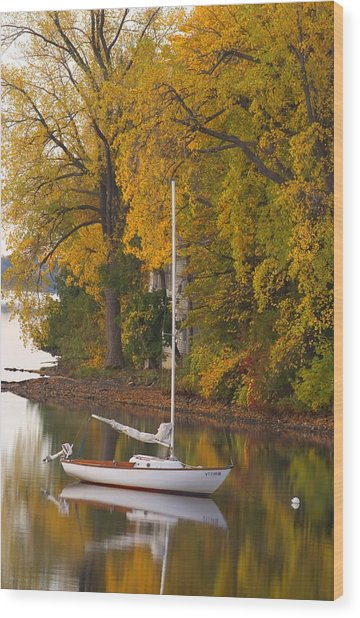 Sailboat In Alburg Vermont  Wood Print