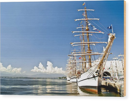 Sailboat In Rio Wood Print by Daniel Wander
