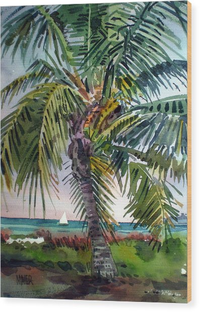Sailboat In The Keys Wood Print by Donald Maier