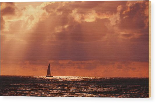 Sailboat Sun Rays Wood Print