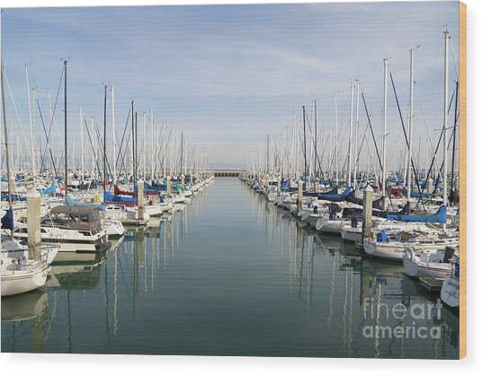 Sailboats At South Beach Harbor San Francisco Dsc5767 Wood Print