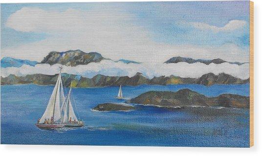 Sailing 2 Wood Print by Min Wang
