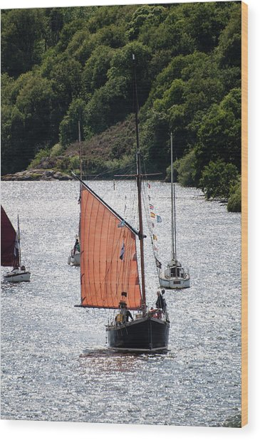 Sailing 46 Wood Print