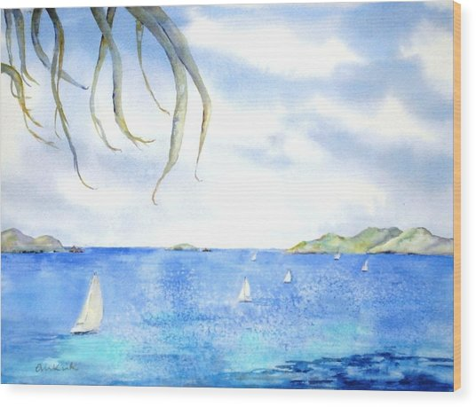 Sailing Between The Islandsd Wood Print