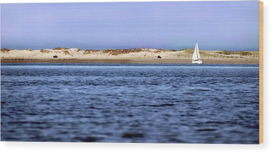 Sailing Blue Wood Print