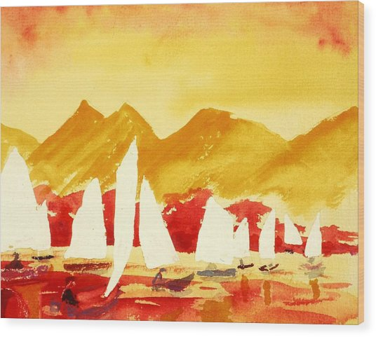 Sailing Class Wood Print by Buster Dight