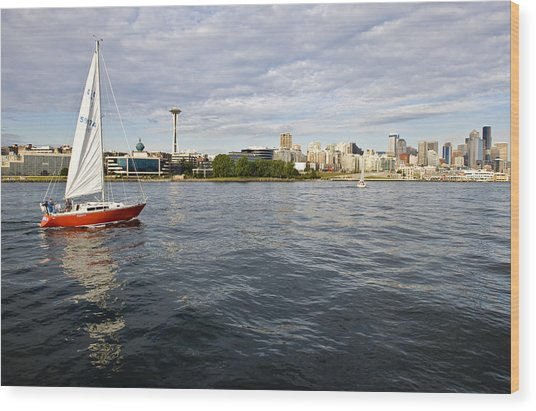 Sailing Downtown Wood Print by Tom Dowd