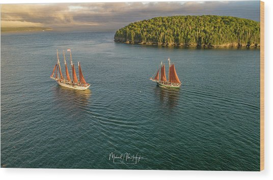 Sailing Frenchman Bay Wood Print