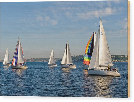 Sailing Group Seattle Wood Print by Tom Dowd