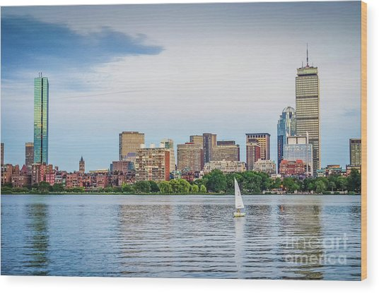 Sailing In Back Bay Wood Print by Mike Ste Marie