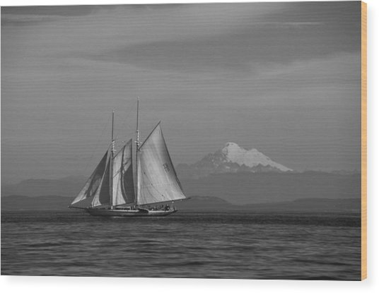 Sailing In Pacific Northwest Wood Print