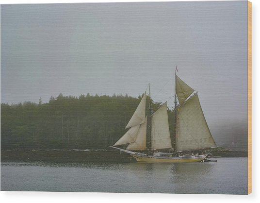 Sailing In The Mist Wood Print