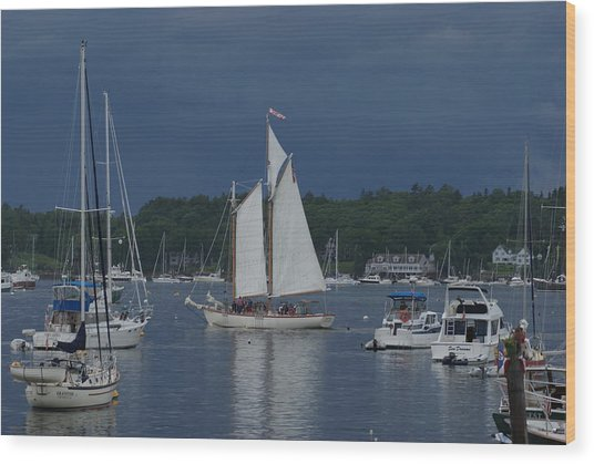 Sailing Wood Print by Lois Lepisto