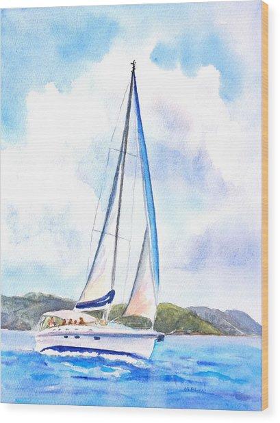 Sailing The Islands 2 Wood Print