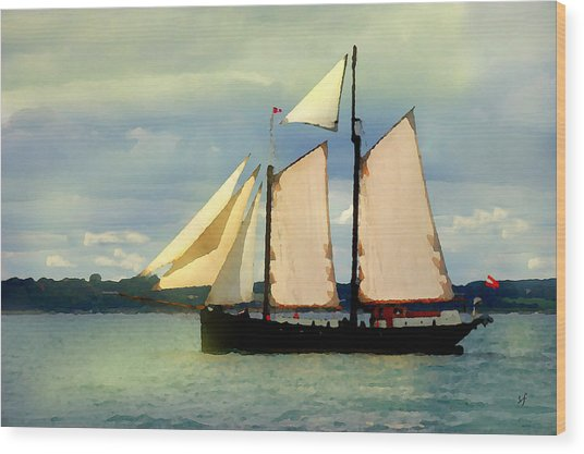 Wood Print featuring the digital art Sailing The Sunny Sea by Shelli Fitzpatrick