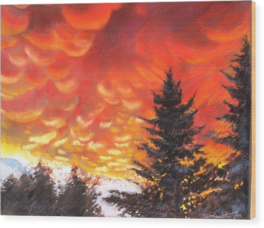 Sailors Delight Wood Print by Sharon Wright
