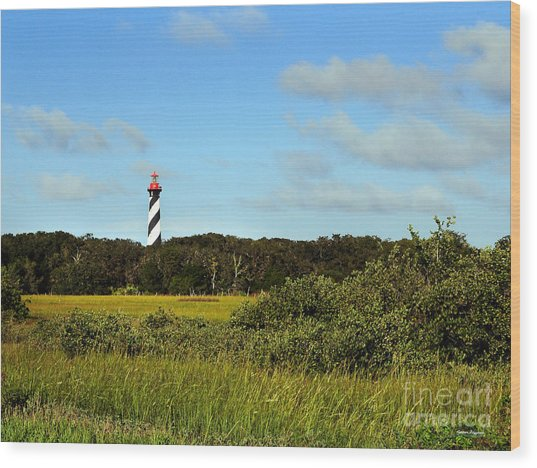 Saint Augustine Lighthouse Wood Print by Addison Fitzgerald