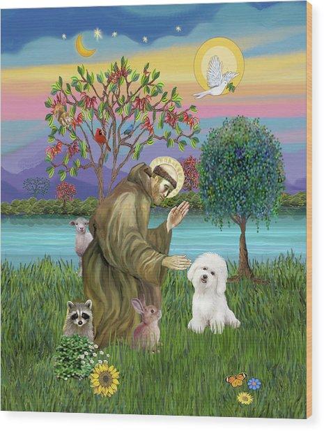 Saint Francis Blesses A Bichon Frise Wood Print