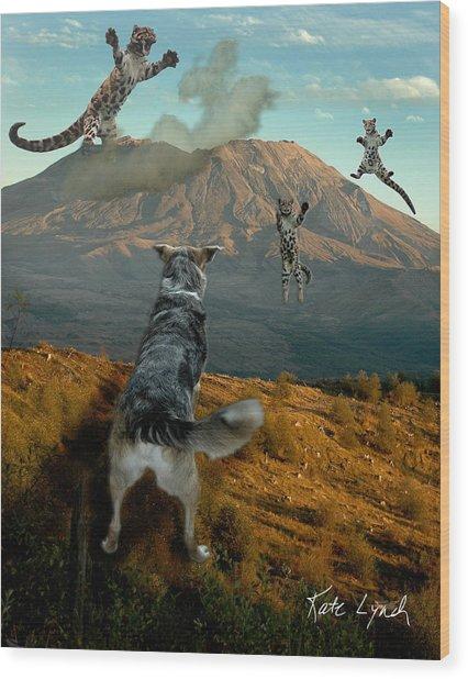 Saint Helens Cats Wood Print