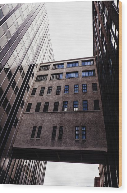 Saint Louis Missouri Architecture Buildings Wood Print by Dylan Murphy