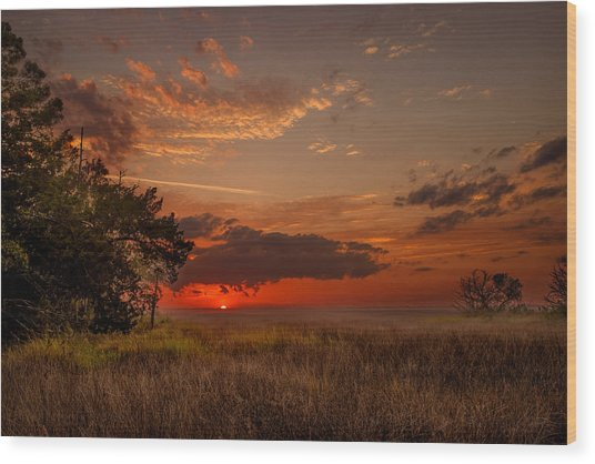 Saint Simons Island Salt Marsh Twilight Wood Print