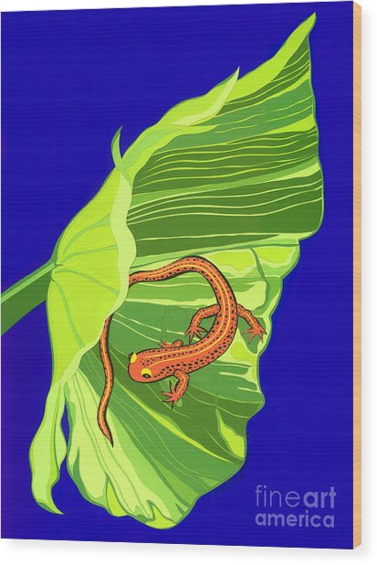 Salamander Wood Print by Lucyna A M Green
