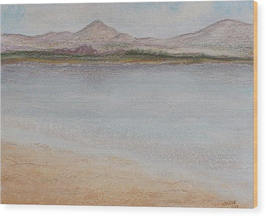 Salar Wood Print
