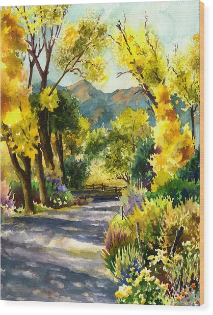 Salida Country Road Wood Print